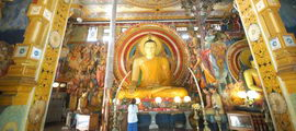 Classic Trip to Sri Lanka